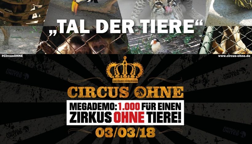 WHAT A WEEK: Happy End im Tal der Tiere und CircusOHNE!