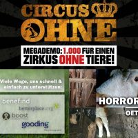 WHAT A WEEK: CircusOHNE & Horror-Hof