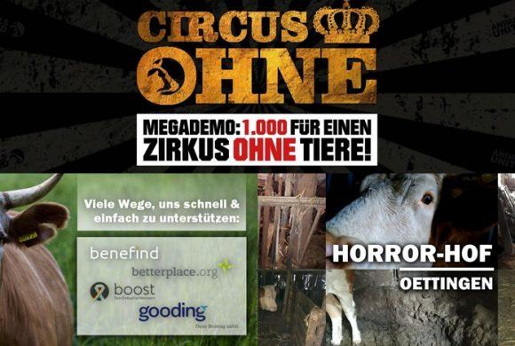 WHAT A WEEK: CircusOHNE & Horror-Hof