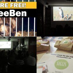 WHAT A WEEK: Bens Befreiung jährt sich zum zweiten Mal!