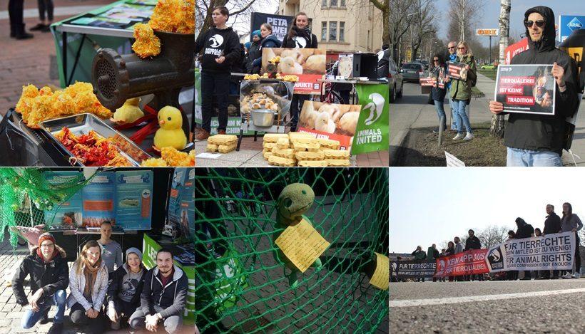 WHAT A WEEK: Tierleidfreie Ostern, CircusOHNE & mehr