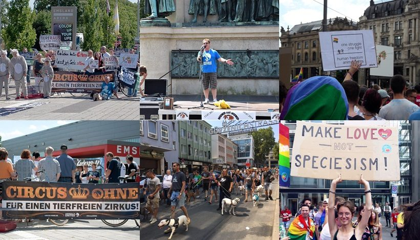 WHAT A WEEK: Hund ist Hund, CircusOHNE & CSD!