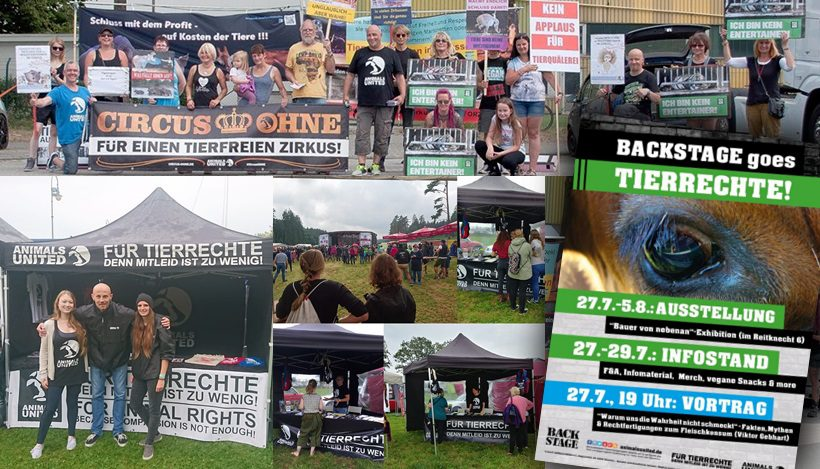 WHAT A WEEK: CircusOHNE & jede Menge Aufklärung über Tierrechte!