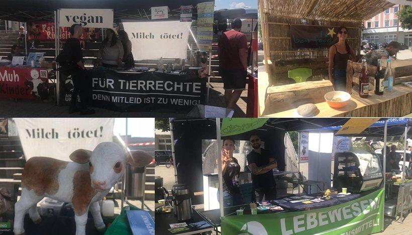 WHAT A WEEK: Tierleidfreies Fest im Allgäu!