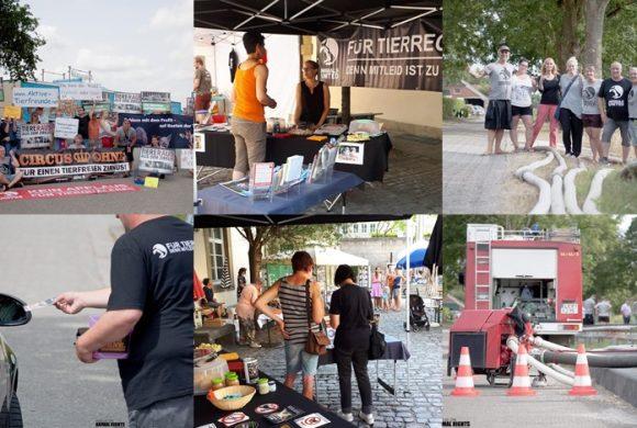 WHAT A WEEK: CircusOHNE, Umweltfest & Rettung von Fischen