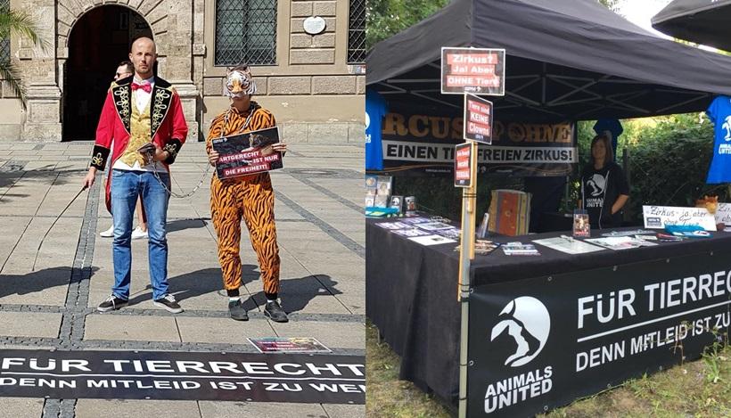 WHAT A WEEK: Für einen tierfreien Zirkus in Kempten, München und Bremen!