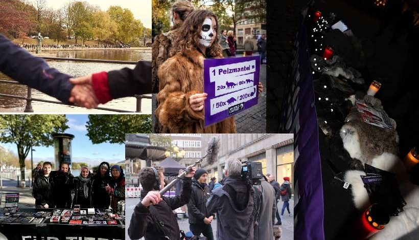 WHAT A WEEK: Menschenkette in Hamburg & Aufklärung über Pelz!