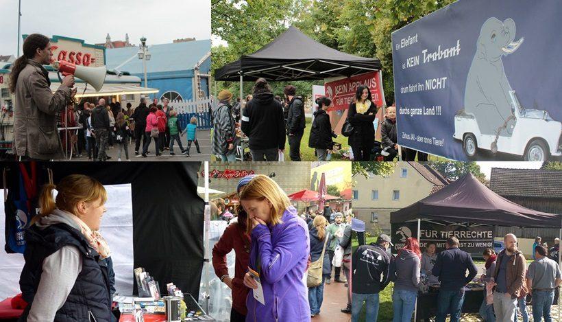 WHAT A WEEK: Von Infoständen bis CircusOHNE-Demos