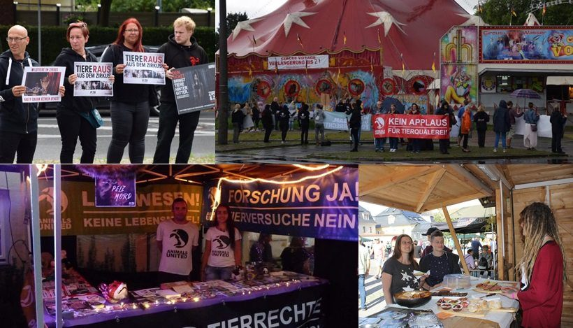 WHAT A WEEK: Von Festivals bis Zirkusdemonstrationen