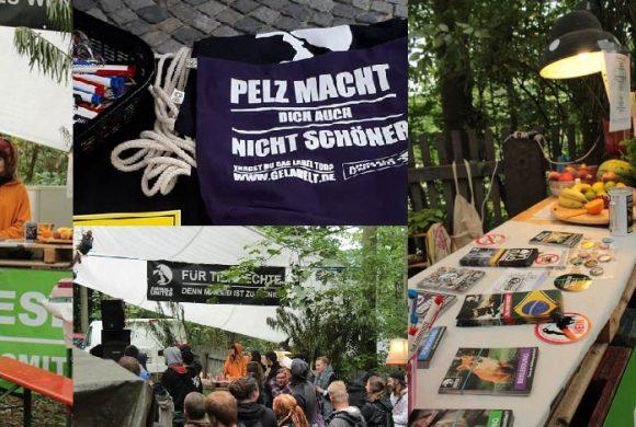 WHAT A WEEK: Von Klimakiller Fleischkonsum bis Festival